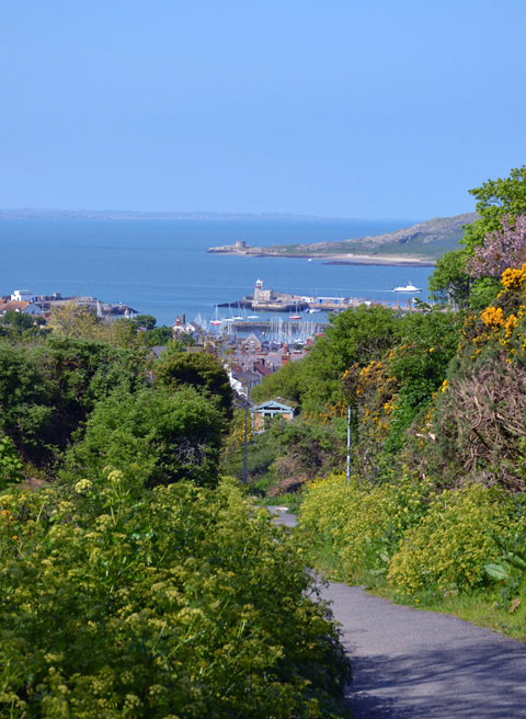 Howth Harbour seen from the tramline loop walk